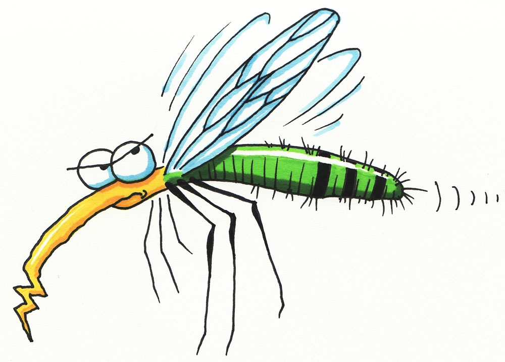 Mosquito drawing for kids